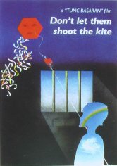 Don't Let Them Shoot the Kite